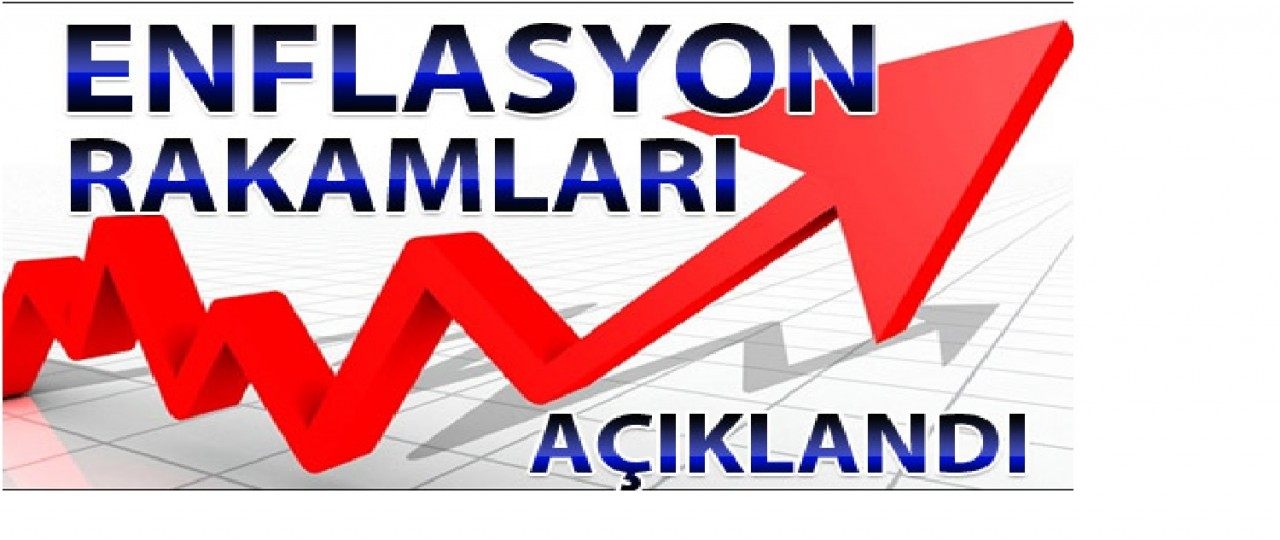 bcdturkey Enflasyon 2016 to  2017  economy