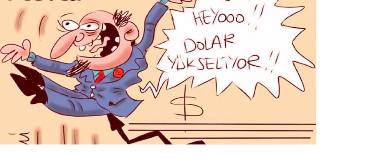 bcdturkey devalüasyon 2016 sonu 2017 ye girerken ekonomi